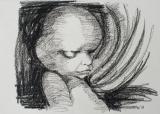 Foetus 20 weken 10 - 27 X 21